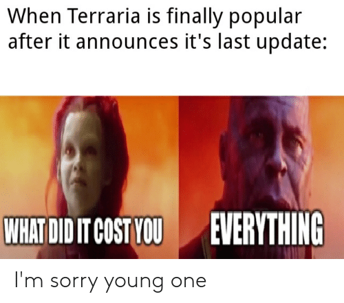 When Terraria Is Finally Popular After It Announces It's