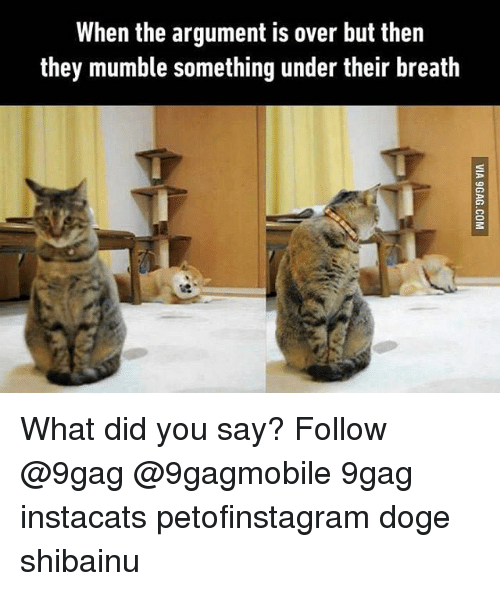 9gag, Memes, and 🤖: When the argument is over but then  they mumble something under their breath What did you say? Follow @9gag @9gagmobile 9gag instacats petofinstagram doge shibainu