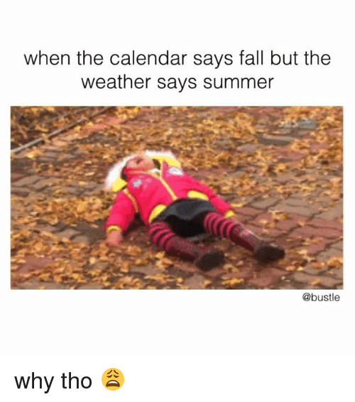 Fall, Memes, and Summer: when the calendar says fall but the  weather says summer  @bustle why tho 😩