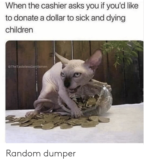 Children, Sick, and Asks: When the cashier asks you if you'd like  to donate a dollar to sick and dying  children  The TastelessGentlemen Random dumper