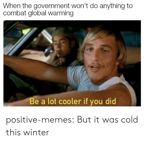Global Warming, Memes, and Tumblr: When the government won't do anything to  combat global warming  Be a lot cooler if you did positive-memes:  But it was cold this winter