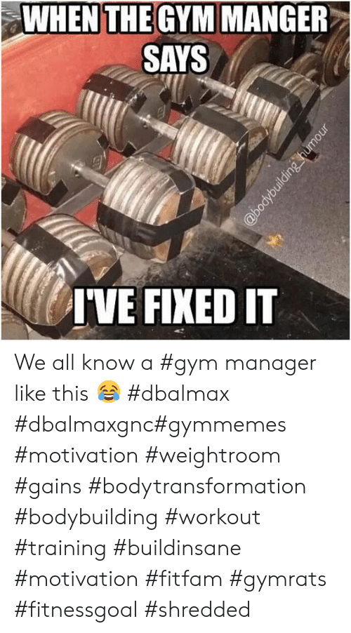 Gym, Bodybuilding, and Motivation: WHEN THE GYM MANGER  SAYS  IVE FIXED IT  @bodybuilding humour We all know a #gym manager like this 😂 #dbalmax #dbalmaxgnc#gymmemes #motivation #weightroom #gains #bodytransformation #bodybuilding #workout #training #buildinsane #motivation #fitfam #gymrats #fitnessgoal #shredded