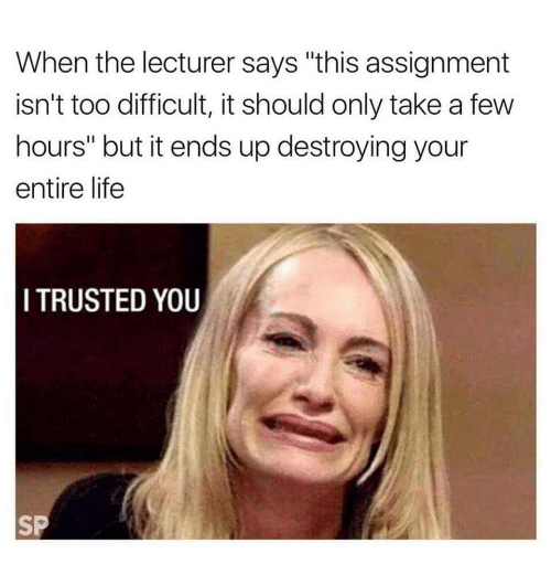 "Life, You, and Lecturer: When the lecturer says ""this assignment  isn't too difficult, it should only take a few  hours"" but it ends up destroying your  entire life  I TRUSTED YOU  SP"