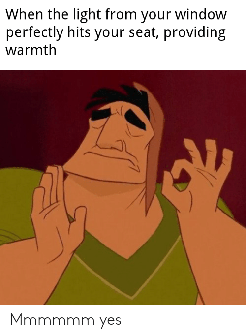 Dank Memes, Yes, and Light: When the light from your window  perfectly hits your seat, providing  warmth Mmmmmm yes