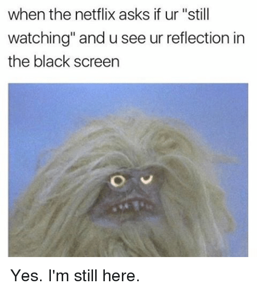 Image result for black screen after netflix meme