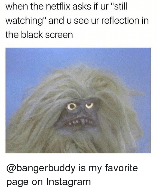 """Instagram, Netflix, and Black: when the netflix asks if ur """"still  watching"""" and u see ur reflection in  the black screen @bangerbuddy is my favorite page on Instagram"""