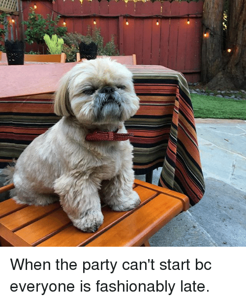 Memes, Party, and 🤖: When the party can't start bc everyone is fashionably late.