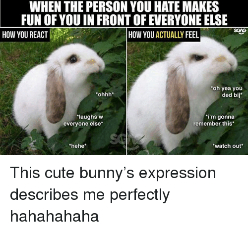 Cute, Memes, and Watch Out: WHEN THE PERSON YOU HATE MAKES  FUN OF YOU IN FRONT OF EVERYONE ELSE  SGAG  HOW YOU REACT  HOW YOU ACTUALLY FEEL  oh yea you  ohhh*  ded bij  laughs w  everyone else*  i'm gonna  remember this  hehe*  watch out This cute bunny's expression describes me perfectly hahahahaha