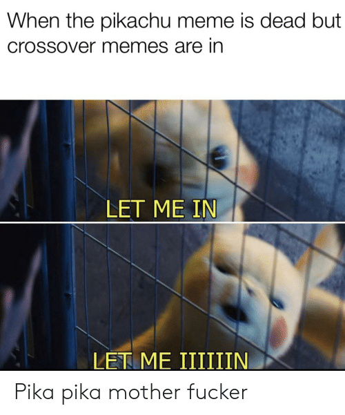 Meme, Memes, and Pikachu: When the pikachu meme is dead but  Crossover memes are in  LET ME IN Pika pika mother fucker
