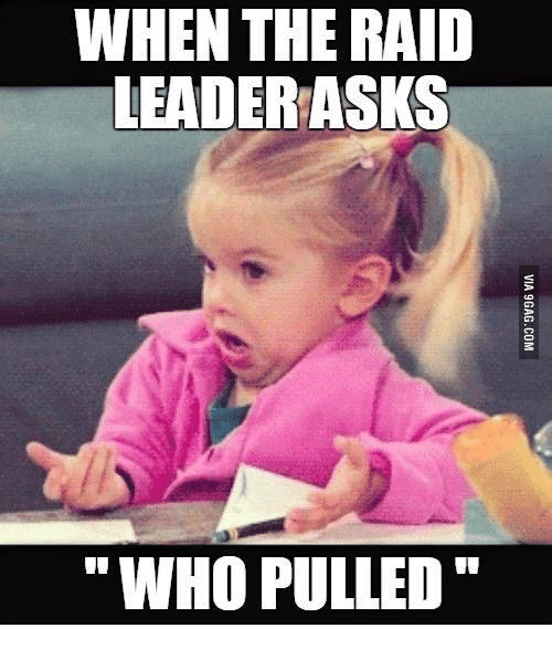 "Raid, The Raid, and Leader: WHEN THE RAID LEADER ASKS ""WHO PULLED"