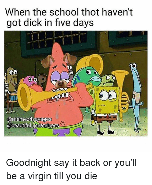 Funny, School, and Thot: When the school thot haven't  got dick in five days  @memez4savages  obeautifuLmemeiness Goodnight say it back or you'll be a virgin till you die