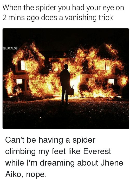 Jhene Aiko, Memes, and Jhene: When the spider you had your eye on  2 mins ago does a vanishing trick  @LUTALO8 Can't be having a spider climbing my feet like Everest while I'm dreaming about Jhene Aiko, nope.