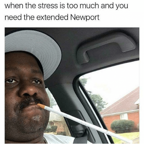 Newport, Too Much, and Dank Memes: when the stress is too much and you  need the extended Newport