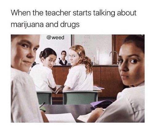 Drugs, Memes, and Teacher: When the teacher starts talking about  marijuana and drugs  @weed