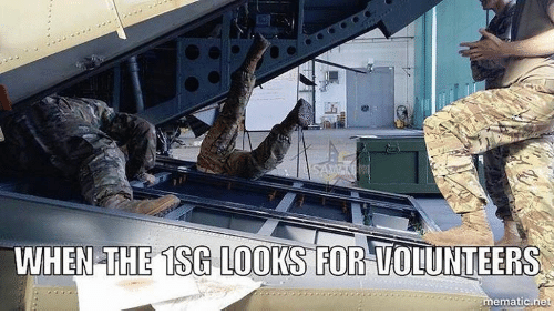 Memes, 🤖, and Net: WHEN THE TSG LOOKS FOR VOLUNTEERS  mematic net