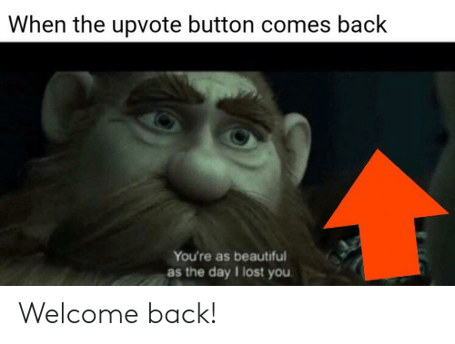 When The Upvote Button Comes Back You Re As Beautiful As The Day I Lost You Welcome Back Beautiful Meme On Me Me