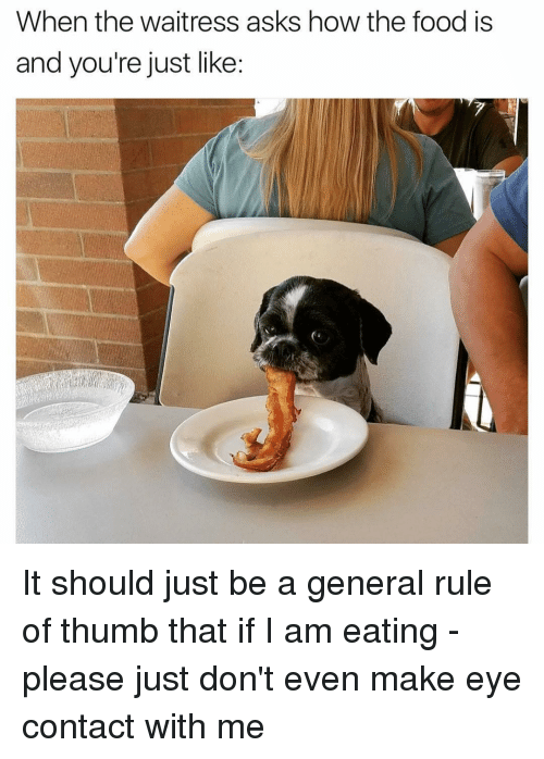 Food, Girl Memes, and Asks: When the waitress asks how the food is  and you're just like: It should just be a general rule of thumb that if I am eating - please just don't even make eye contact with me