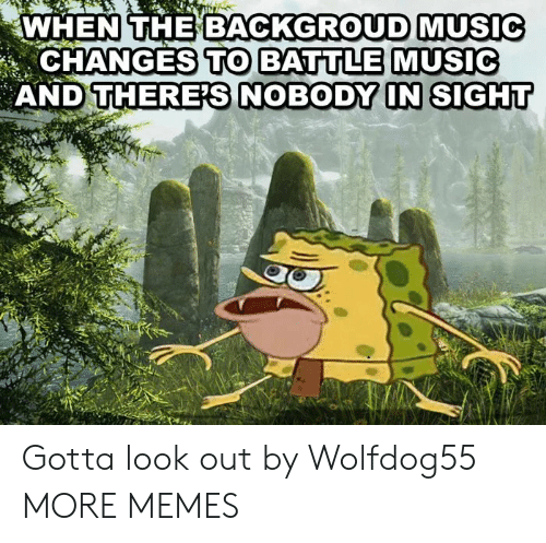 Dank, Memes, and Music: WHEN THEBACKGROUD MUSIC  CHANGES TO BATULE MUSIC  AND T Gotta look out by Wolfdog55 MORE MEMES