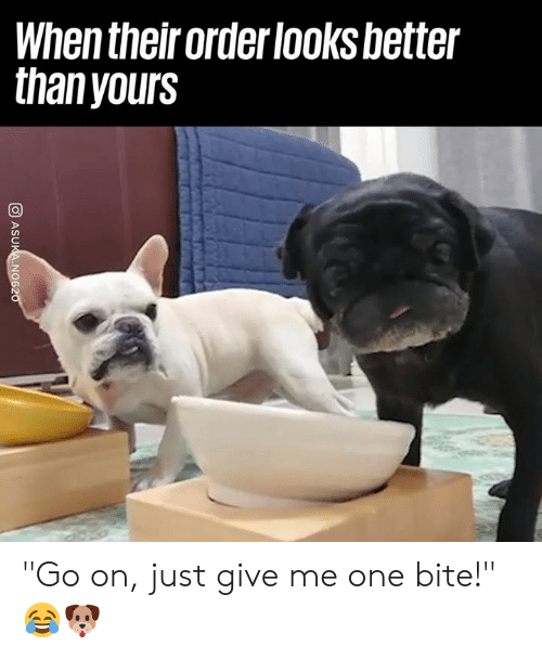"Dank, 🤖, and One: When their order looksbetter  thanyours ""Go on, just give me one bite!"" 😂🐶"