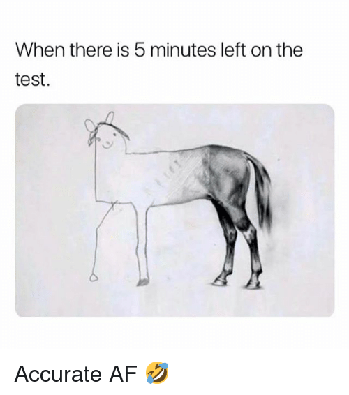 Af, Memes, and Test: When there is 5 minutes left on the  test. Accurate AF 🤣