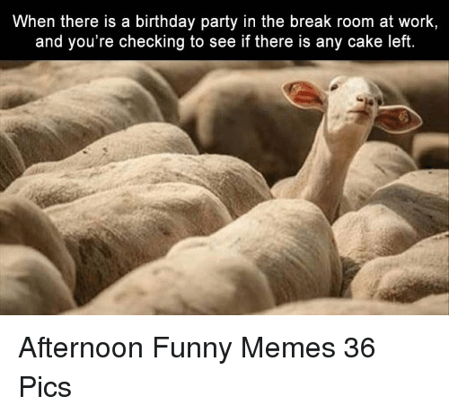 When There Is A Birthday Party In The Break Room At Work And You Re
