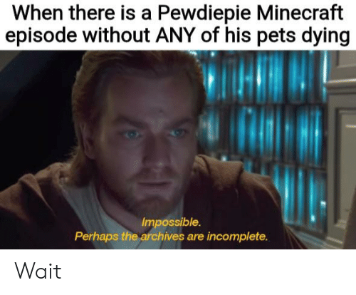 When There Is a Pewdiepie Minecraft Episode Without ANY of His Pets