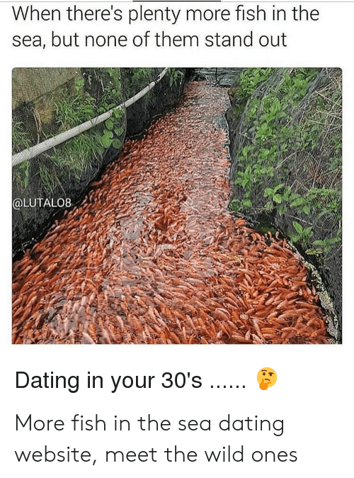 More fish dating