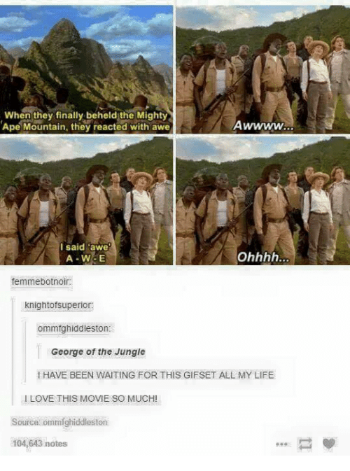 Life, Love, and Memes: When they finally beheld the Mighty  Ape Mountain, they reacted with awe  I said awe  A-W-E  femmebotnoir:  knightofsuperior:  ommfghiddleston  George of the Jungle  I HAVE BEEN WAITING FOR THIS GIFSET ALL MY LIFE  I LOVE THIS MOVIE SO MUCH!  Source ommfghiddleston  104,643 notes