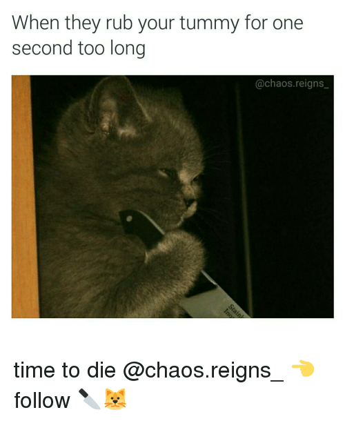 Memes, 🤖, and Reign: When they rub your tummy for one  second too long  @chaos reigns time to die @chaos.reigns_ 👈 follow 🔪🐱