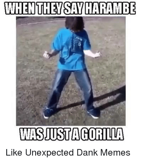 Dank, Meme, and Memes: WHEN THEY SATHARAMBE  WASJUSTA GORILLA Like Unexpected Dank Memes