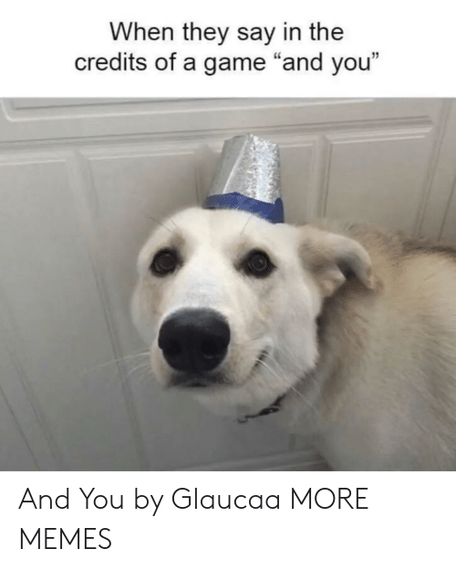 """Dank, Memes, and Target: When they say in the  credits of a game """"and you""""  12 And You by Glaucaa MORE MEMES"""