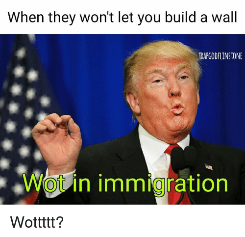 When They Won't Let You Build a Wall TRAPGODFLINSTONE WO in