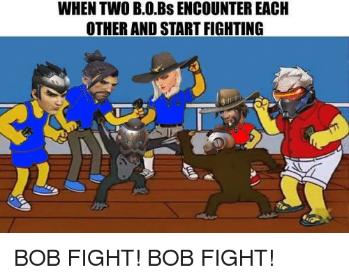 WHEN TWO BOBs ENCOUNTER EACH OTHER AND START FIGHTING