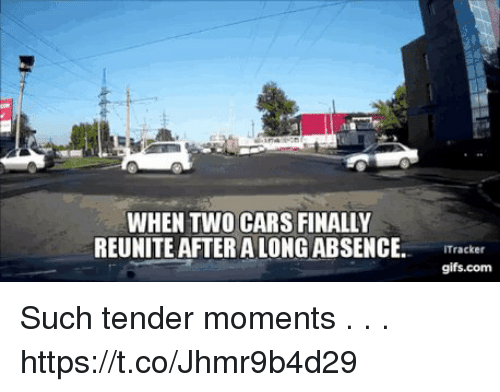when two cars finally reunite after a long absence tracker such