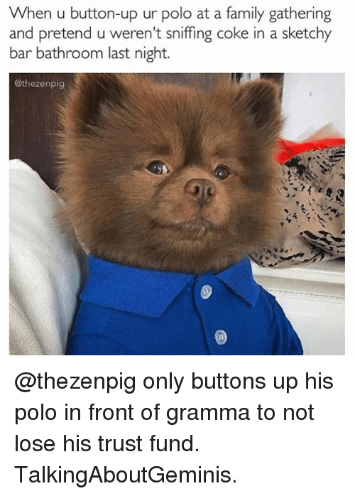 Family, Memes, and Polo: When u button-up ur polo at a family gathering  and pretend u weren't sniffing coke in a sketchy  bar bathroom last night.  @thezenpig @thezenpig only buttons up his polo in front of gramma to not lose his trust fund. TalkingAboutGeminis.