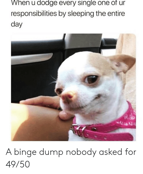 Dodge, Sleeping, and Single: When u dodge every single one of ur  responsibilities by sleeping the entire  day A binge dump nobody asked for 49/50