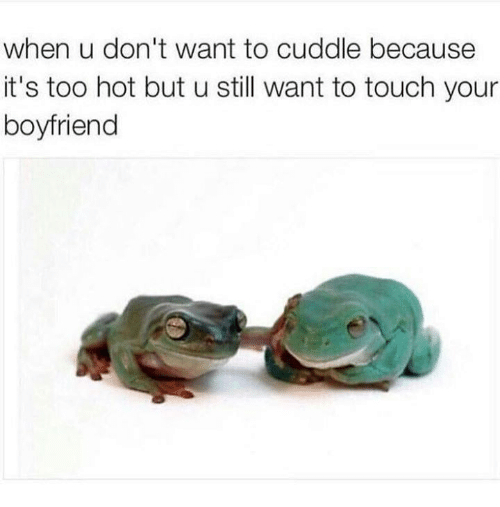 I Want To Cuddle With You Quotes: 25+ Best Memes About Want To Cuddle