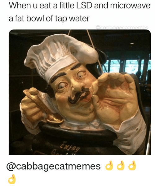 Water, Dank Memes, and Fat: When u eat a little LSD and microwave  a fat bowl of tap water  tmen  xFay @cabbagecatmemes 👌👌👌👌