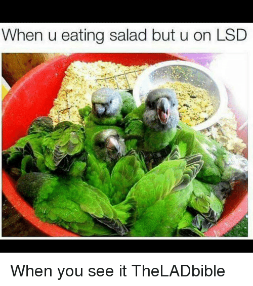 Memes, When You See It, and 🤖: When u eating salad but u on LSD When you see it TheLADbible