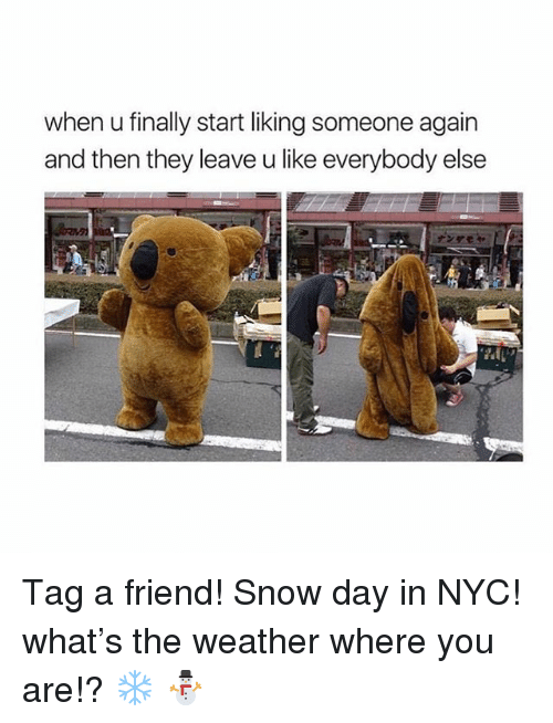 Snow, The Weather, and Weather: when u finally start liking someone again  and then they leave u like everybody else Tag a friend! Snow day in NYC! what's the weather where you are!? ❄️ ⛄️