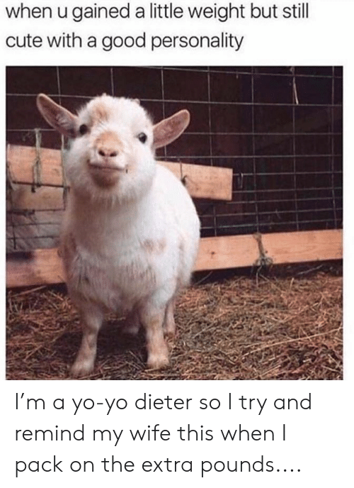 Cute, Memes, and Yo: when u gained a little weight but still  cute with a good personality I'm a yo-yo dieter so I try and remind my wife this when I pack on the extra pounds....