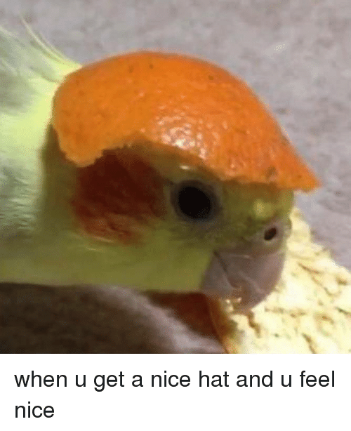 Nice, Hat, and Get: when u get a nice hat and u feel nice