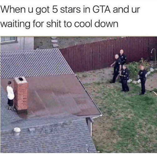 Dank, Shit, and Cool: When u got 5 stars in GTA and ur  waiting for shit to cool down