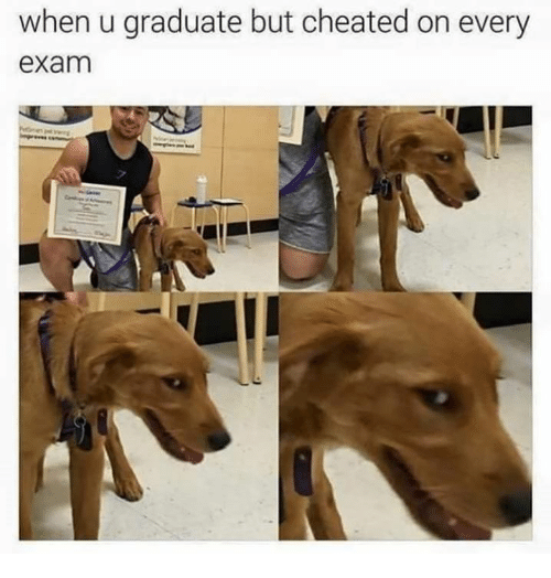 When U Graduate but Cheated on Every Exam | Cheating Meme on ME ME