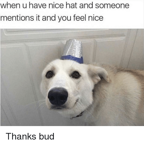 Nice, You, and Hat: when u have nice hat and someone  mentions it and you feel nice Thanks bud