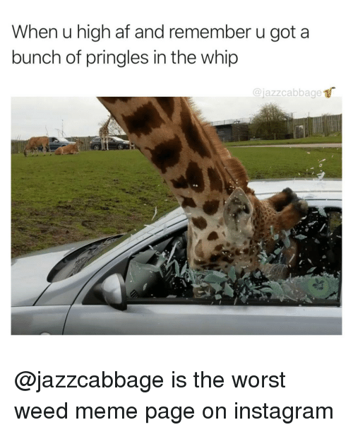 Af, Instagram, and Meme: When u high af and remember u got a  bunch of pringles in the whip  @jazzcabbage @jazzcabbage is the worst weed meme page on instagram