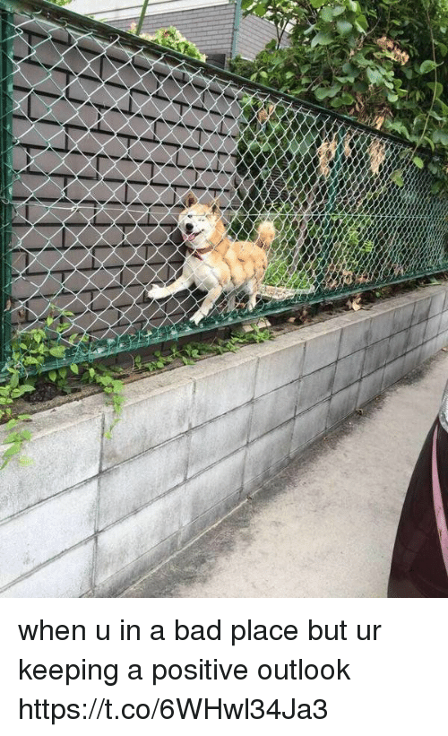 Bad, Outlook, and Girl Memes: when u in a bad place but ur keeping a positive outlook https://t.co/6WHwl34Ja3