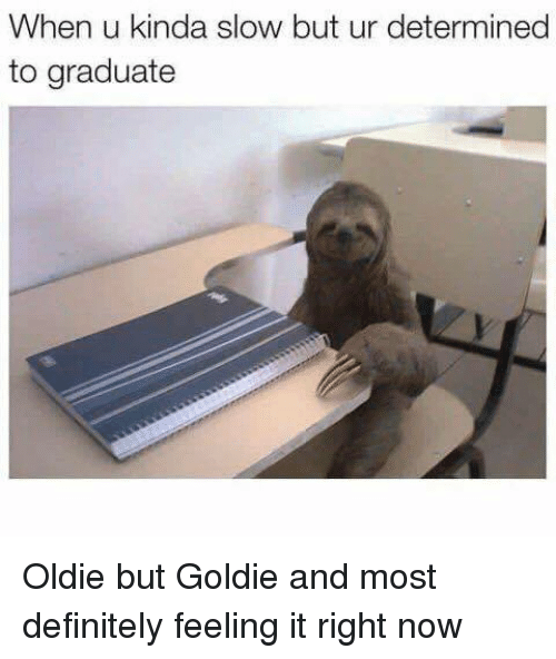 Definitely, Now, and Goldie: When u kinda slow but ur determined  to graduate Oldie but Goldie and most definitely feeling it right now