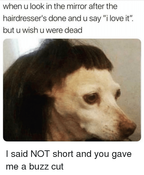 """Funny, Love, and Mirror: when u look in the mirror after the  hairdresser's done and u say""""i love it"""".  but u wish u were dead I said NOT short and you gave me a buzz cut"""