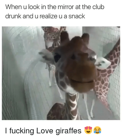 Club, Drunk, and Fucking: When u look in the mirror at the club  drunk and u realize u a snack I fucking Love giraffes 😍😂